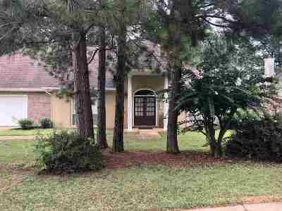 Ridgeland Single Family Home For Sale: 353 Pinewood Ln
