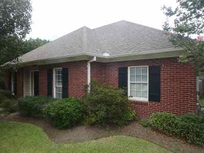 Ridgeland Single Family Home For Sale: 646 Camden Park Dr