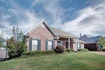 Brandon Single Family Home For Sale: 119 Vineyard Blvd