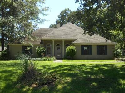 Byram Single Family Home For Sale: 559 Buchanan Dr