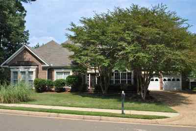 Brandon Single Family Home For Sale: 316 Willow Ridge Cv