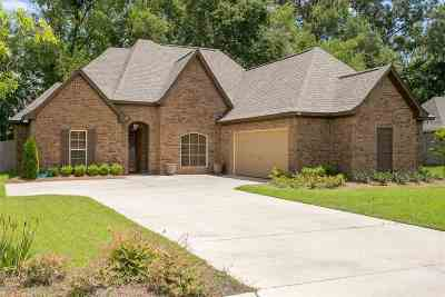 Canton Single Family Home For Sale: 232 Cooper Ln