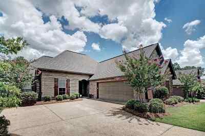Brandon Single Family Home For Sale: 210 Amethyst Dr