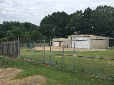 Hinds County Commercial For Sale: 4085 Springridge Rd
