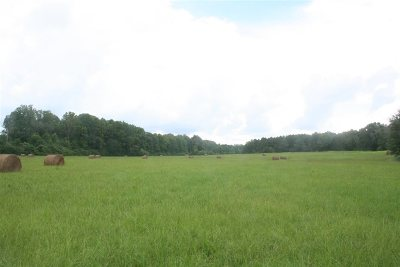 Leake County Residential Lots & Land For Sale: Hwy 43