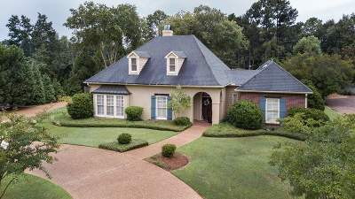 Ridgeland Single Family Home For Sale: 242 Sawbridge Dr