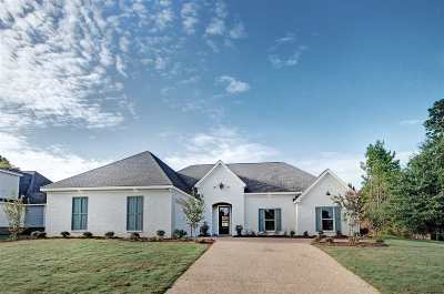 Rankin County Single Family Home For Sale: 319 Cornerstone Dr