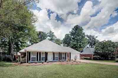 Flowood Single Family Home For Sale: 242 Williams Cir