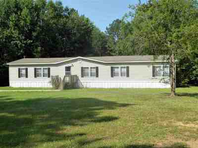 Rankin County Mobile/Manufactured For Sale: 258 Green Hill Rd