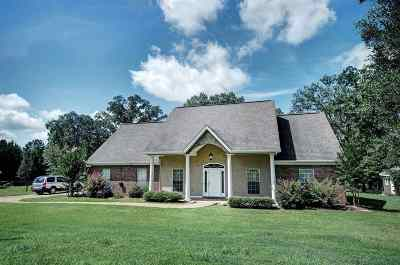 Byram Single Family Home For Sale: 459 Lake Dockery Dr