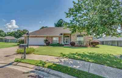 Hinds County Single Family Home For Sale: 169 Halston Cv