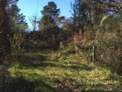 Hinds County Residential Lots & Land For Sale: 4717 Tank Rd