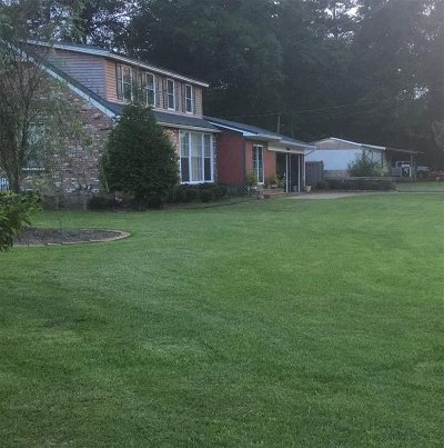 Hinds County Single Family Home For Sale: 2039 S Ridge Rd