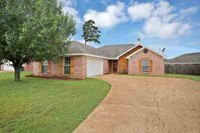 Rankin County Single Family Home For Sale: 341 Willow Run