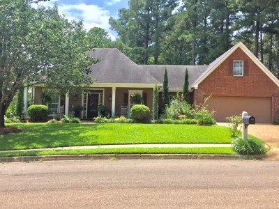 Ridgeland Single Family Home For Sale: 311 Holley Ln