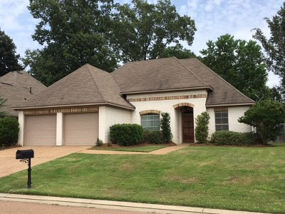 Brandon Single Family Home For Sale: 140 W Pinebrook Dr