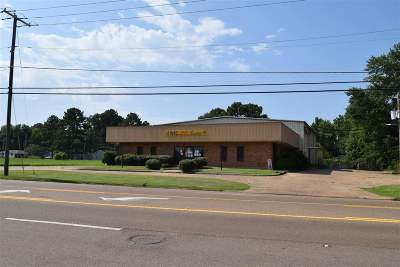 Hinds County Commercial For Sale: 3276 Jr Lynch Street