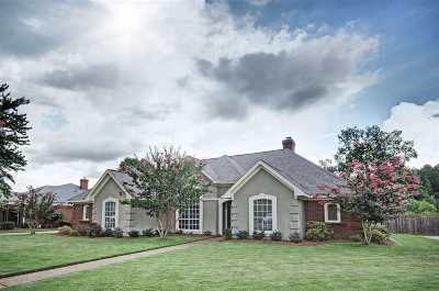 Brandon Single Family Home Contingent/Pending: 305 Northwind Dr