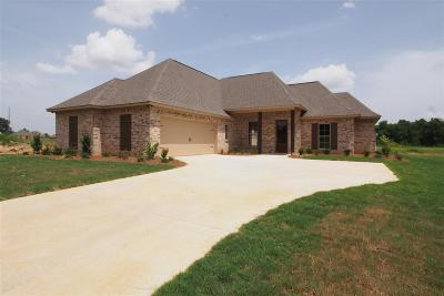 Canton Single Family Home For Sale: 149 Western Ridge Cr