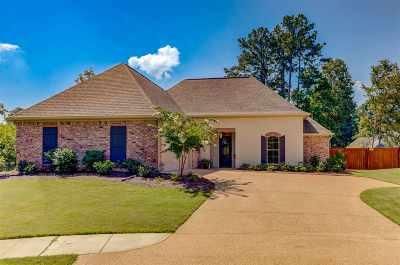 Brandon Single Family Home For Sale: 228 Cowan Creek Dr