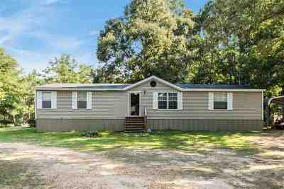 Rankin County Mobile/Manufactured For Sale: 144 Airlie Ave