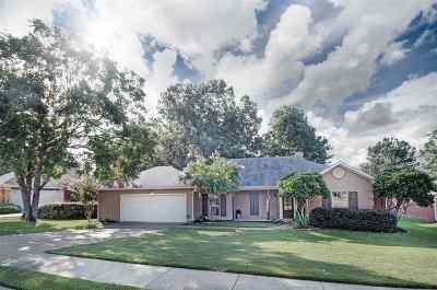 Brandon Single Family Home Contingent/Pending: 128 Azalea Trails Dr