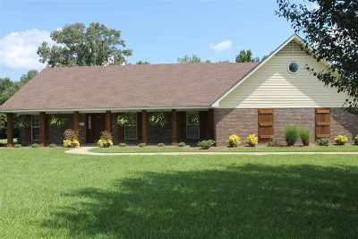 Byram Single Family Home For Sale: 1867 Jayroe Dr
