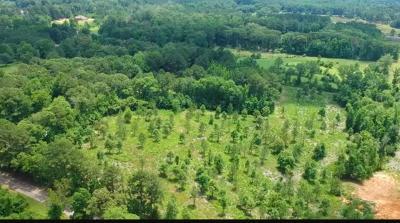 Brandon Residential Lots & Land For Sale: Little Woods Rd