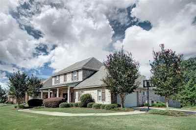 Brandon Single Family Home For Sale: 203 Glen Arbor Blvd
