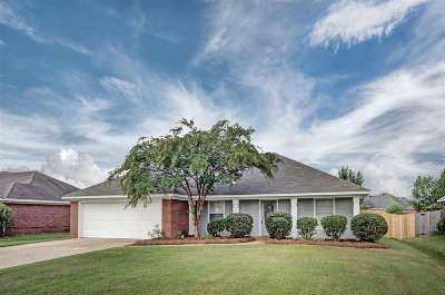 Brandon Single Family Home For Sale: 166 Holmar Dr