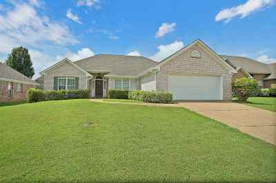 Pearl Single Family Home For Sale: 425 Wildberry Cir