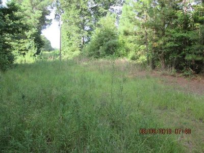 Leake County Residential Lots & Land For Sale: 2210 Hopoca Rd