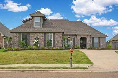 Brandon Single Family Home For Sale: 668 Hidden Hills Crossing