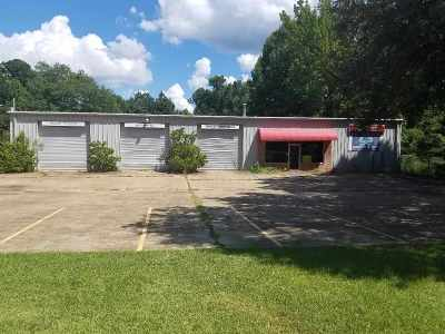 Hinds County Commercial For Sale: 3610 Terry Rd