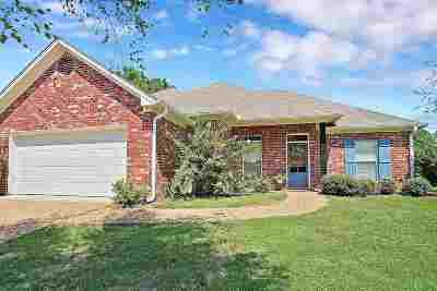 Brandon Single Family Home For Sale: 106 Ashton Dr