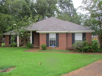 Hinds County Single Family Home For Sale: 805 Mountain Cv