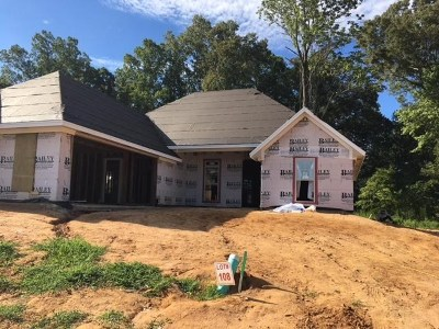 Brandon Single Family Home For Sale: 668 Conti Dr