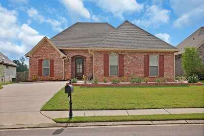 Brandon Single Family Home Contingent/Pending: 225 Stonebridge Blvd
