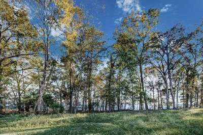 Madison Residential Lots & Land For Sale: 117 North Natchez Dr