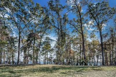 Madison Residential Lots & Land For Sale: 113 North Natchez Dr