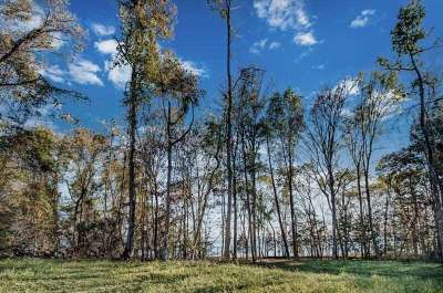Madison Residential Lots & Land For Sale: 107 North Natchez Dr