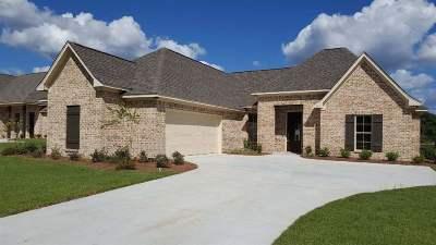 Canton Single Family Home For Sale: 147 Western Ridge Cr