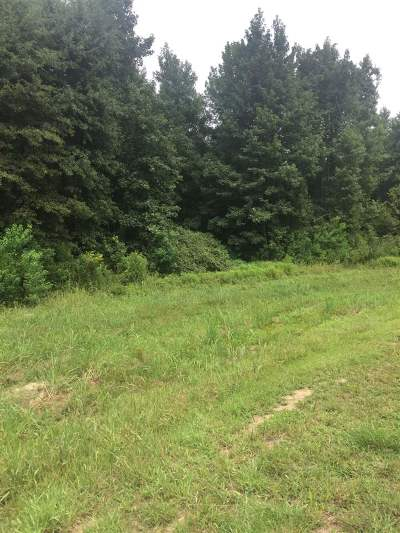 Ridgeland Residential Lots & Land For Sale: Lot 16 Green Trace Cv