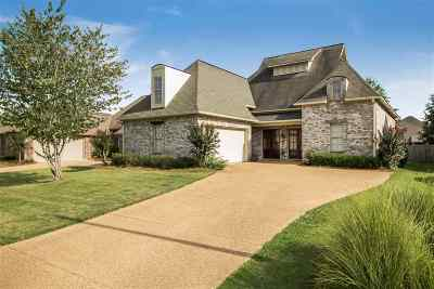 Brandon Single Family Home For Sale: 209 Oakville Cir