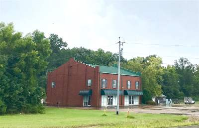 Rankin County Commercial For Sale: 1024 Highway 471 Hwy