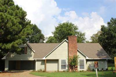 Clinton Single Family Home For Sale: 303 Lindale Cir