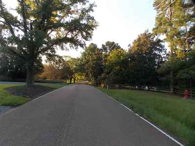Ridgeland Residential Lots & Land For Sale: Richardson Rd