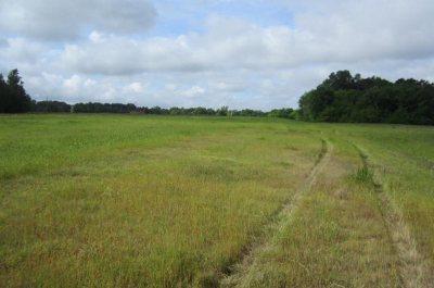 Brandon Residential Lots & Land Contingent/Pending: Hwy 471 N. Hwy