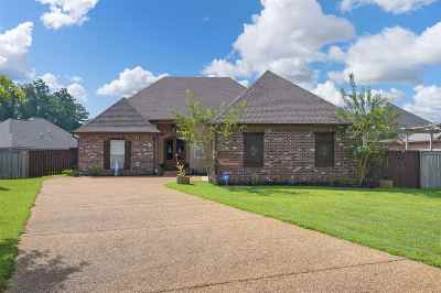 Single Family Home For Sale: 308 Turny Cove