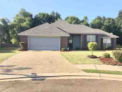 Canton Single Family Home Contingent/Pending: 104 Keating Cir